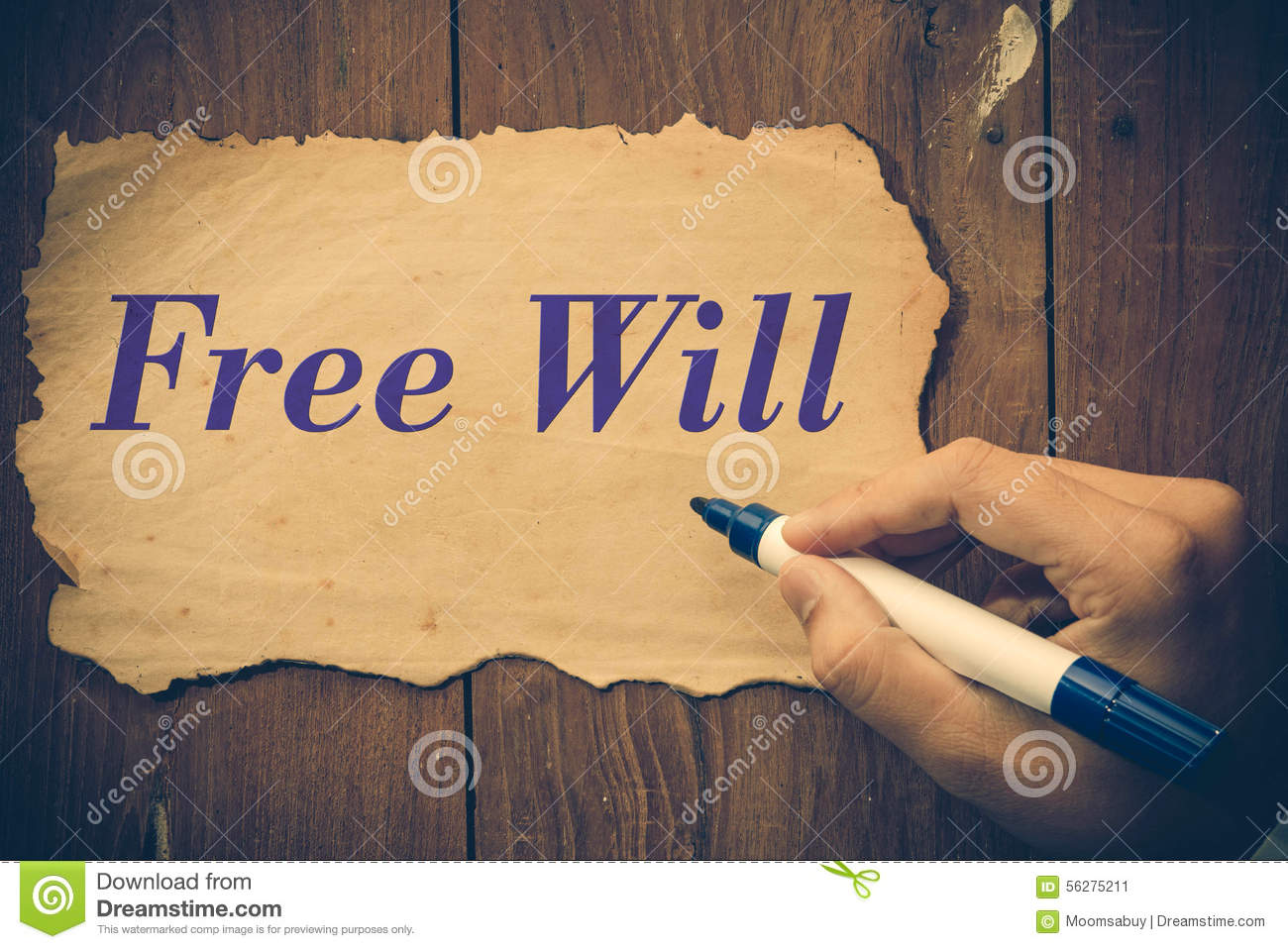 free-will-text-write-paper-note-56275211[1]