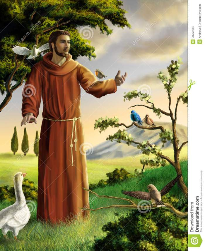 saint-francis-20753906[1]