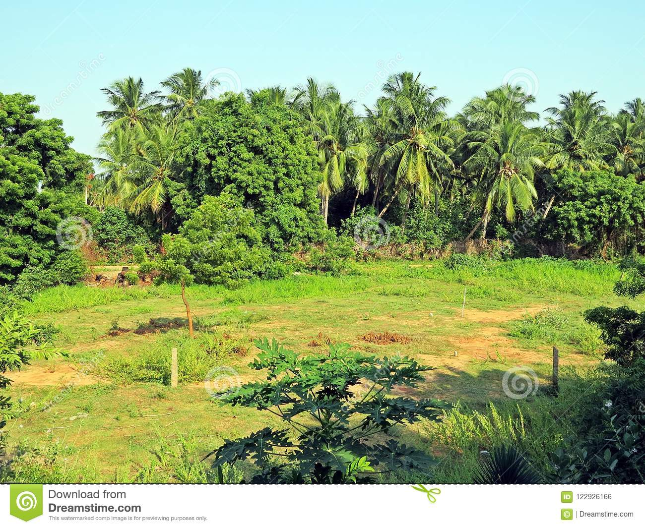 auroville-k-city-dawn-experimental-township-state-tamil-nadu-some-parts-union-territory-puducherry-south-122926166[1]