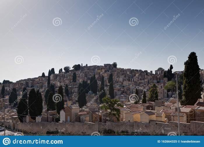 sicilian-cemetery-graveyard-hill-pine-trees-under-blue-sky-enna-sicily-italy-162664325